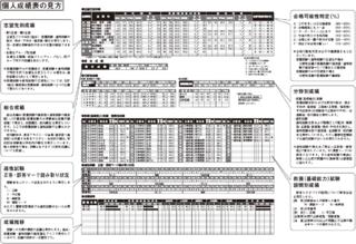 初級模試データ見本.png