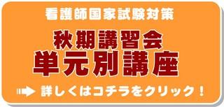 ngs_koku_aki_bana.JPG