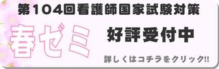 ngs_koku_haru.JPG